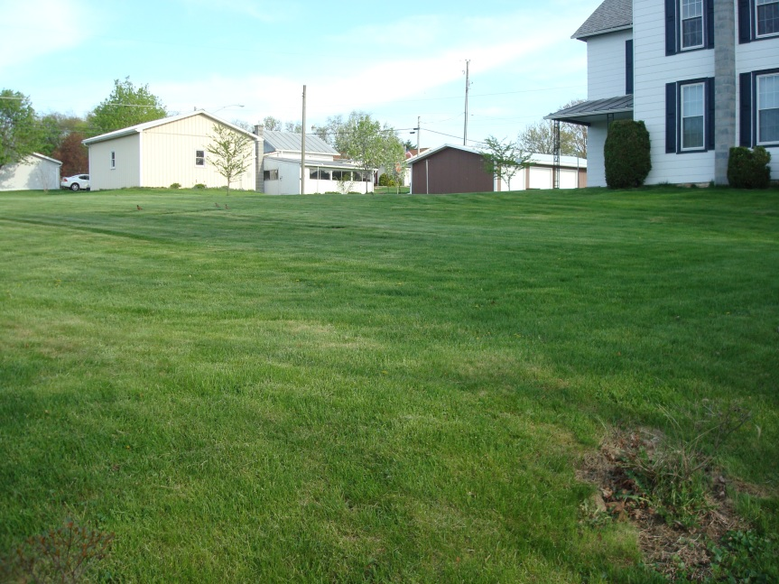 The old McEwensville Baptist Church probably was located somewhere on the lot that contains this yard and house.