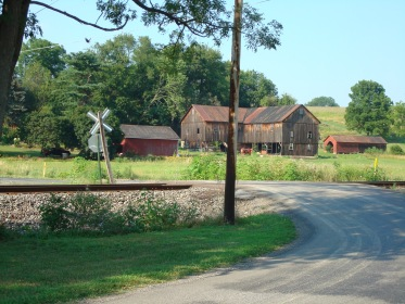 Recent photo of the road  Ruth and Tweet would have walked down as they approached the Muffly farm.