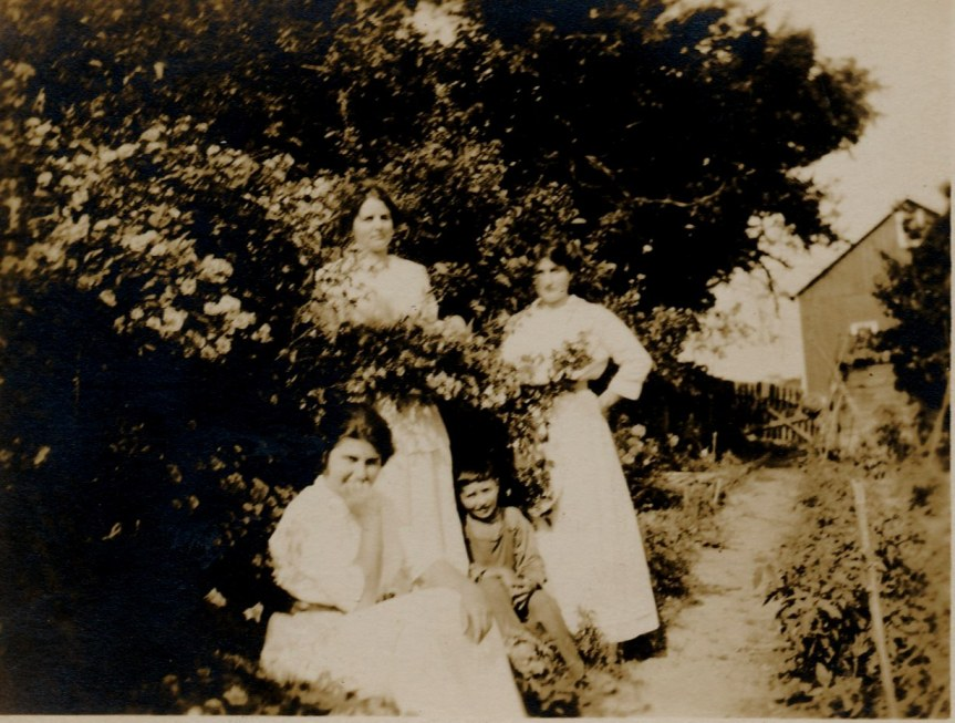Left to right: Helena (seated), Besse, Jimmie, Ruth (circa 1912)