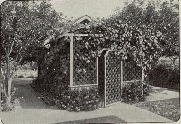 1913-06-72.c