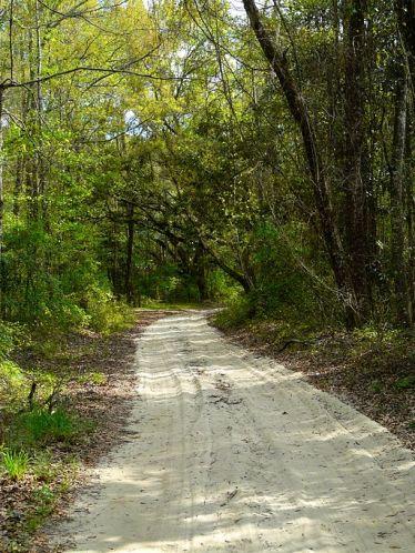 dirt.road