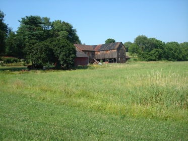 Recent picture of the barn on the Muffly farm