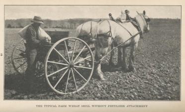 wheat.planting