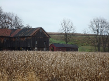 Double corn crib on the farm where Grandma lived on when she wrote the diary.