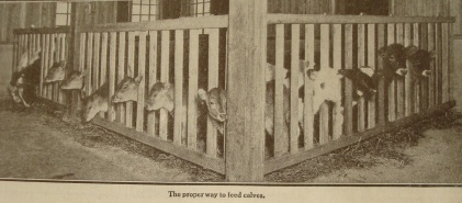 Source: Kimball's Dairy Farmer Magazine (February 1, 1913)