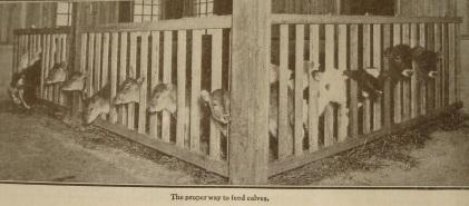 Source: Kimball's Dairy Farmer Magazine (February 1, 1913)