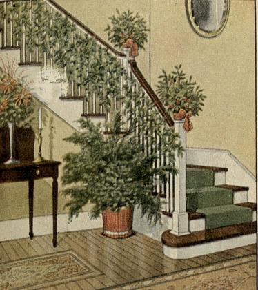 1913-12-81.a