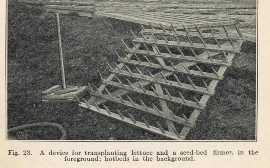 Source: Vegetable Gardening (1914)