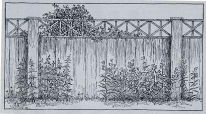 1914-03-44-b