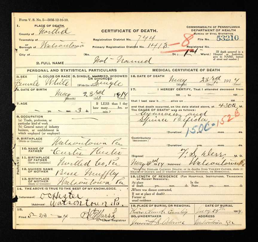 Hester baby death certificate 5 23 1914