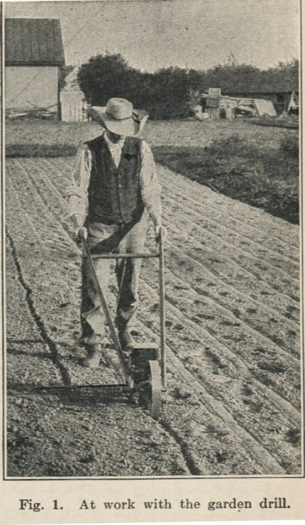 Source: Vegetable Gardening (1914)