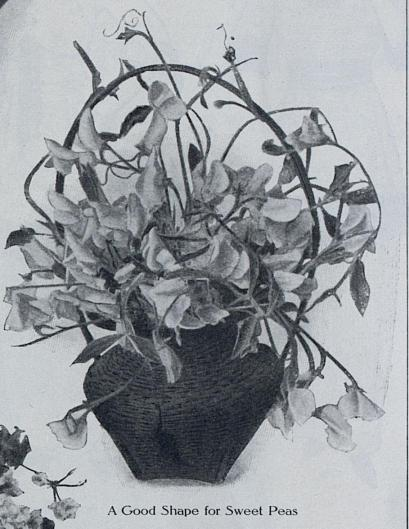 1914-06-23 c