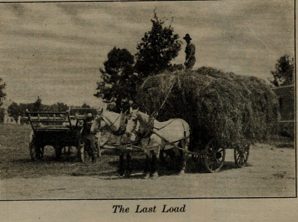 Photo source: Farm Journal (July, 1914)