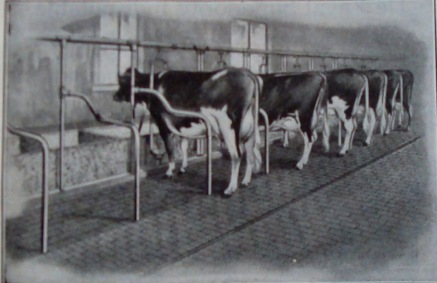 Kimball's Dairy Farmer Magazine (March 1, 1914)
