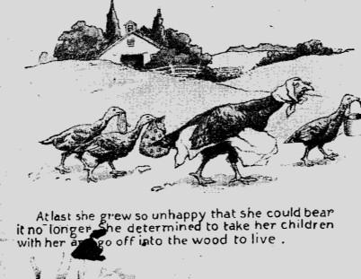 turkey story 3