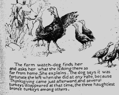 turkey story 5