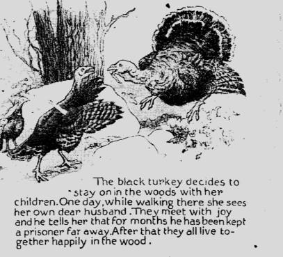 turkey story 6 (1)