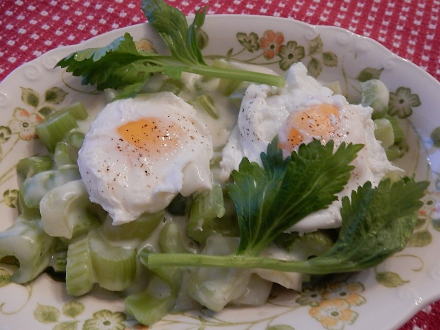 creamed-celery-with-poached-eggs