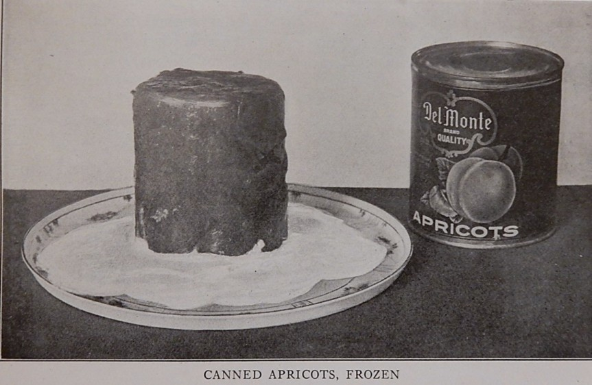 Frozen Canned Apricots on Plate