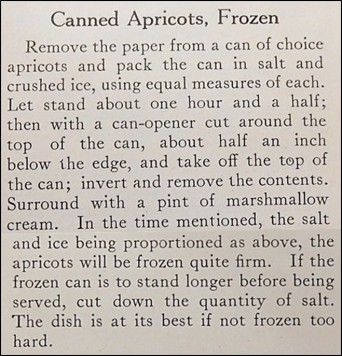 Recipe for Frozen Canned Apricots